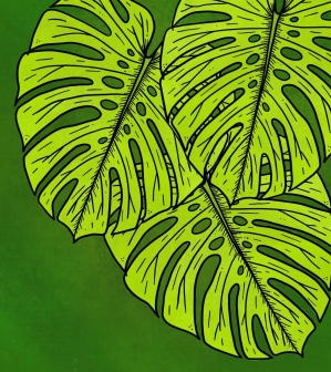 Monstera Leaves by WhimSicAL LusH
